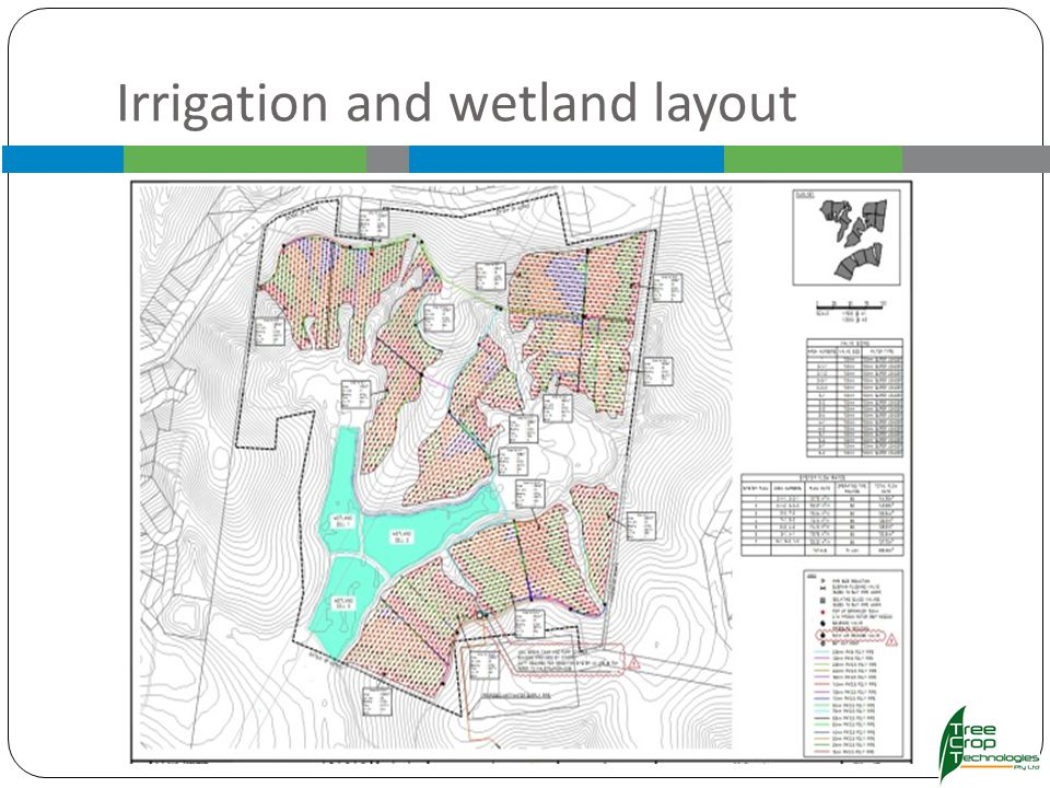 Irrigation and wetland layout