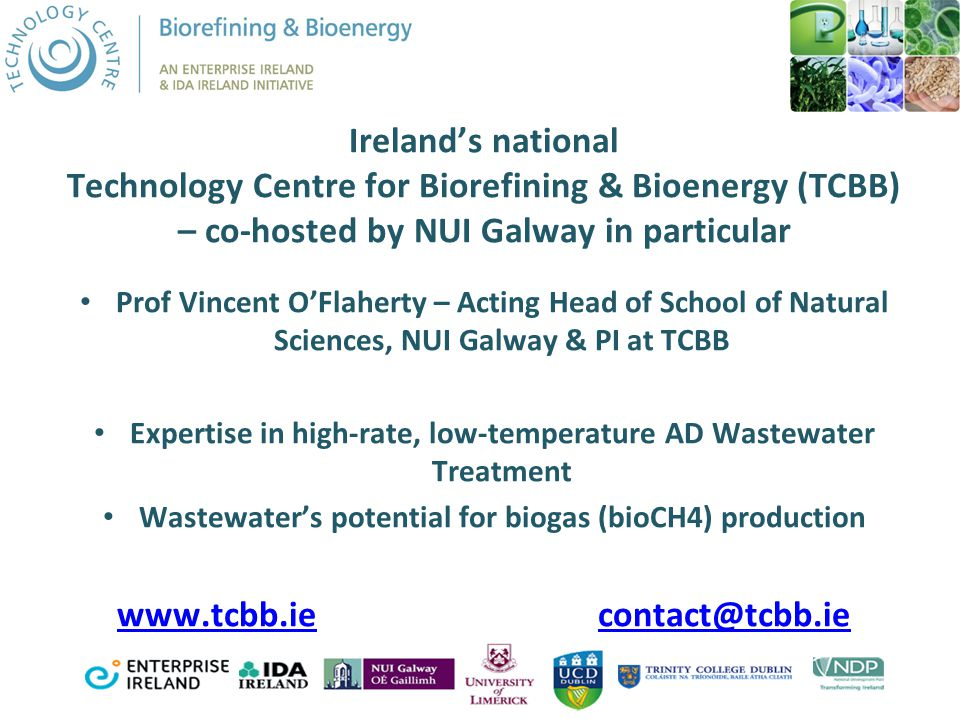 Ireland's national Technology Centre for Biorefining & Bioenergy (TCBB) – co-hosted by NUI Galway in particular Prof Vincent O'Flaherty – Acting Head