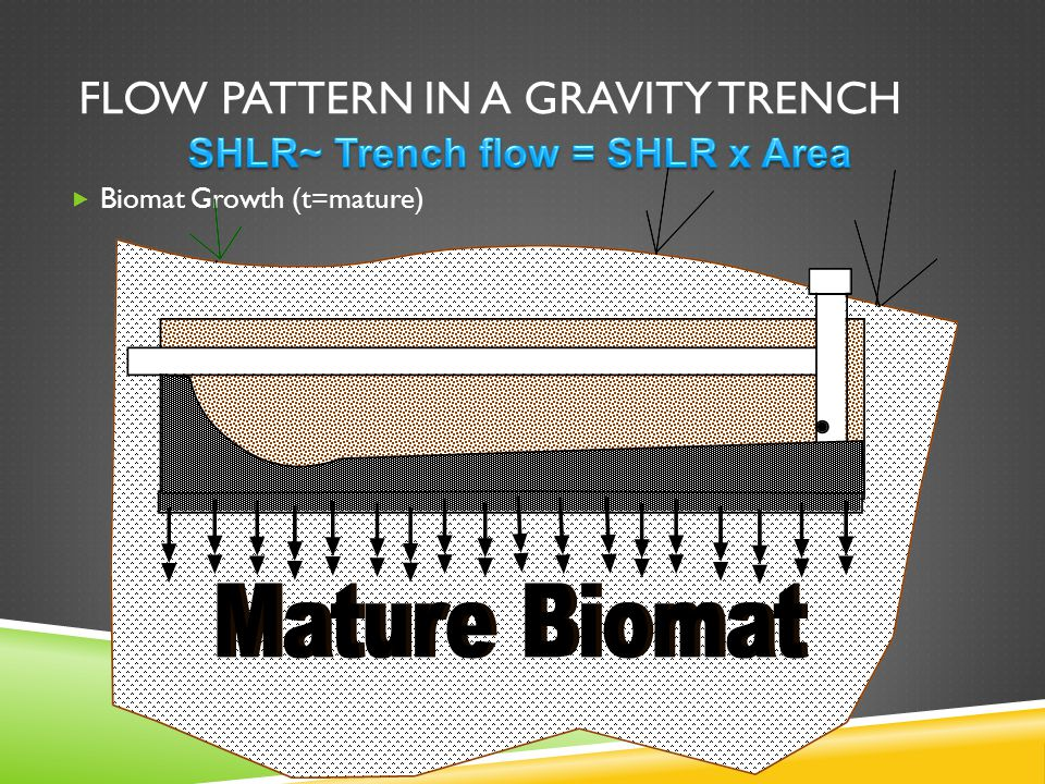 FLOW PATTERN IN A GRAVITY TRENCH  Biomat Growth (t=mature)