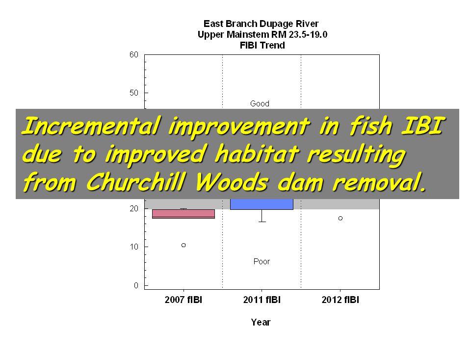 E. Branch Fish 2007, 2011, & 2012