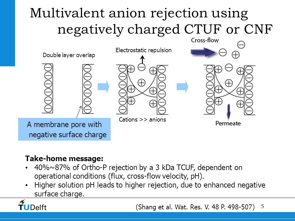 5 Multivalent anion rejection using negatively charged CTUF or CNF A membrane pore with negative surface charge Electrostatic repulsion Double layer overlap Cations >> anions Take-home message: 40%~87% of Ortho-P rejection by a 3 kDa TCUF, dependent on operational conditions (flux, cross-flow velocity, pH).