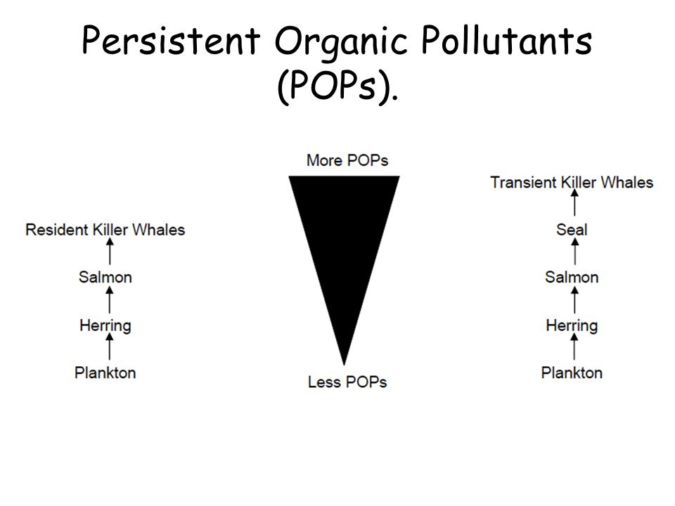 Persistent Organic Pollutants (POPs).