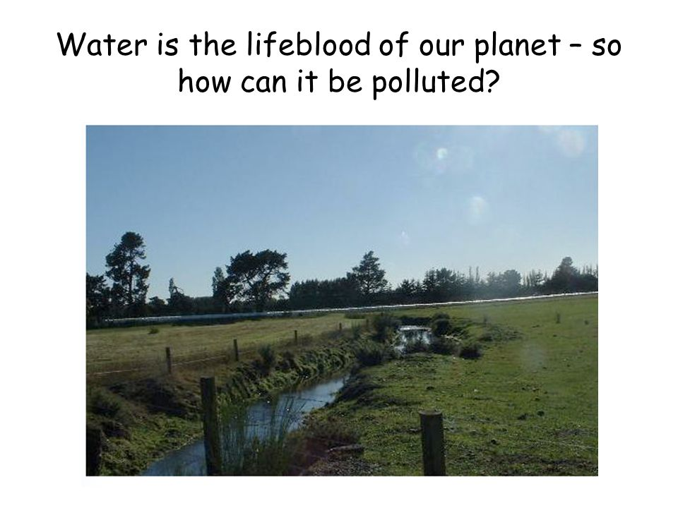 Answer 8: How does DDT find its way into waterways??.