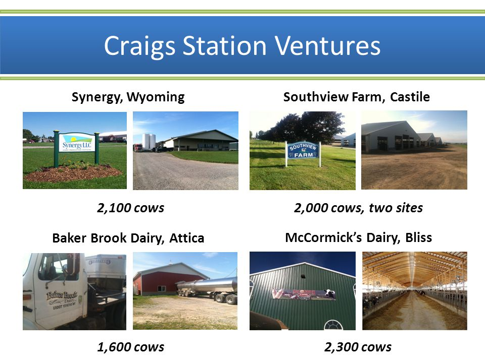 Attributes Locally produced New York milk – All eight farms located within 25 miles of WNYE/CSC Traceability back to these farms DFA Gold-standard-plus production WNYE powered by on-farm green energy Reduced carbon footprint – Low hauling miles, green energy, modern/efficient milk production and processing