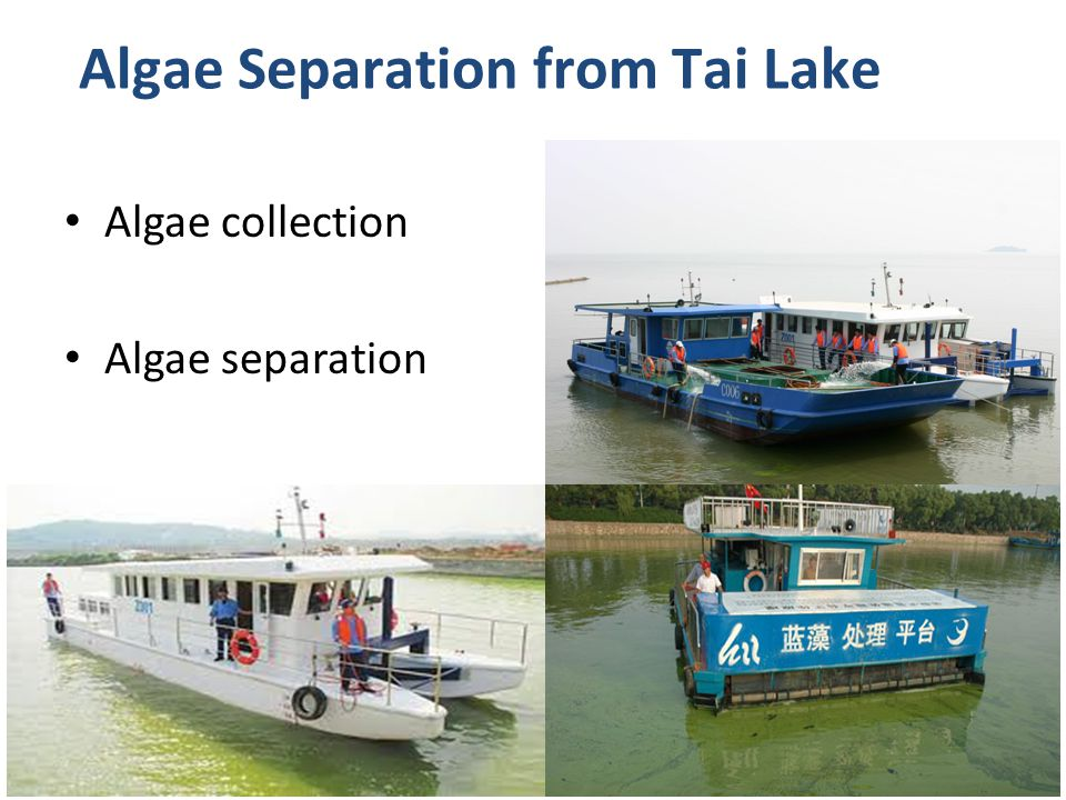 Algae collection Algae separation Algae Separation from Tai Lake