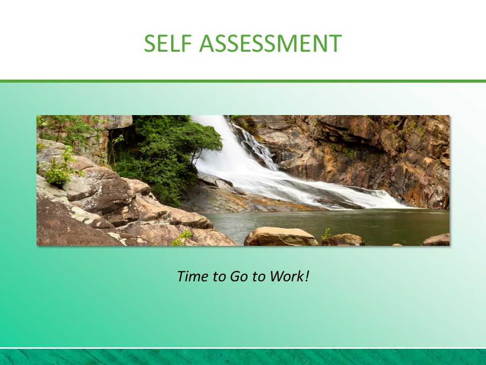 SYSTEM IMPROVEMENT PRIORITIES: SELF ASSESSMENT Time to Go to Work!
