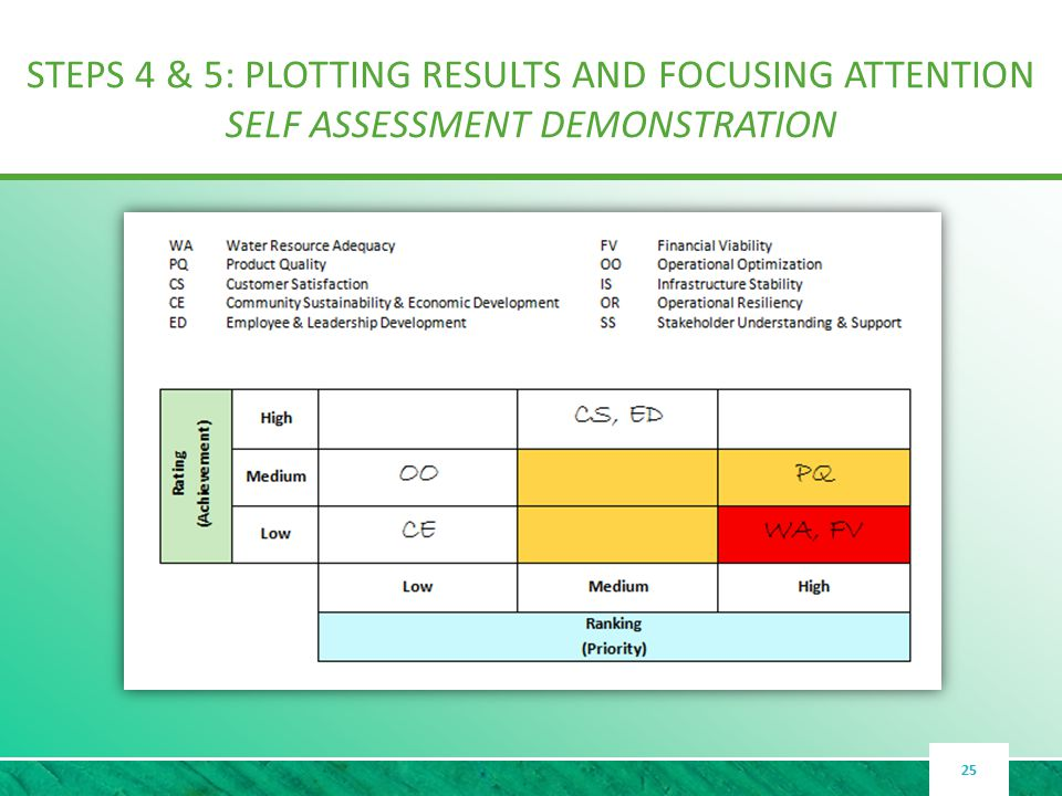 STEPS 4 & 5: PLOTTING RESULTS AND FOCUSING ATTENTION SELF ASSESSMENT DEMONSTRATION 25