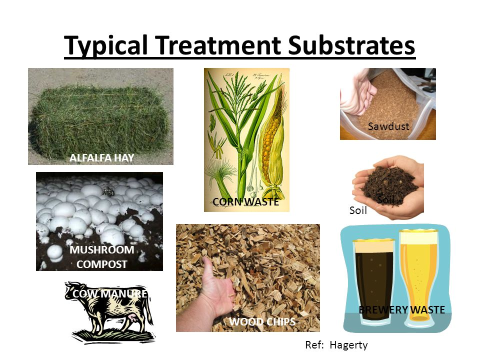 Typical Treatment Substrates WOOD CHIPS MUSHROOM COMPOST CORN WASTE SAWDUST BREWERY WASTE ALFALFA HAY COW MANURE Sawdust Soil Ref: Hagerty