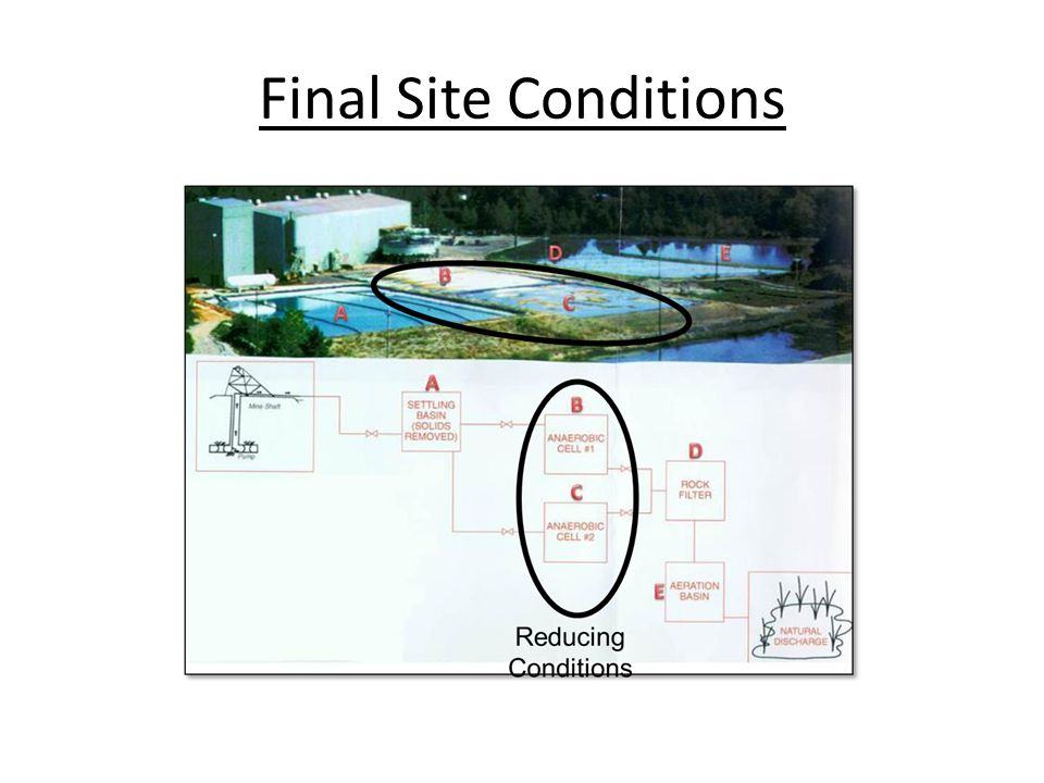 Final Site Conditions