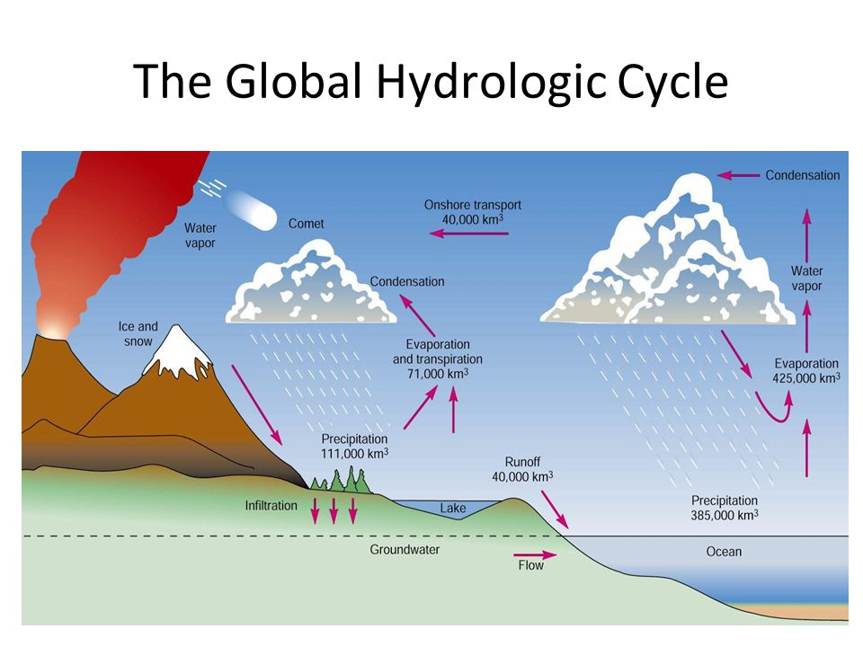 Water Cycle in Florida