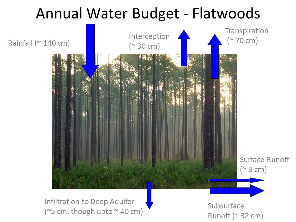 Rainfall (~ 140 cm) Infiltration to Deep Aquifer (~5 cm, in areas much higher) Interception (~ 15 cm) Transpiration (~ 80 cm) Annual Water Budget – Ag Land Surface Runoff (~ 20 cm) Subsurface Runoff (~ 20 cm)