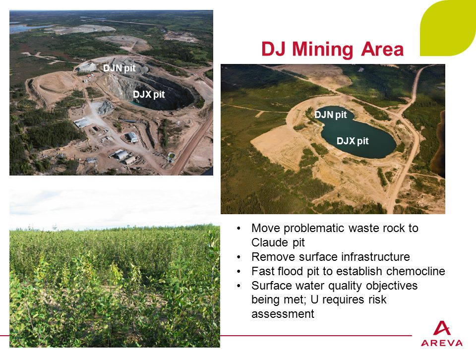 DJ Mining Area AREVA Cluff Lake Project – May 2, 2014 - p.12 DJN pit DJX pit DJN pit Move problematic waste rock to Claude pit Remove surface infrastructure Fast flood pit to establish chemocline Surface water quality objectives being met; U requires risk assessment