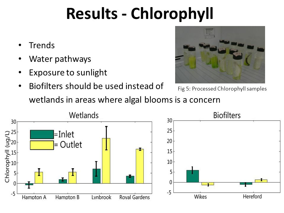 Results - Chlorophyll Trends Water pathways Exposure to sunlight Biofilters should be used instead of wetlands in areas where algal blooms is a concern Fig 5: Processed Chlorophyll samples