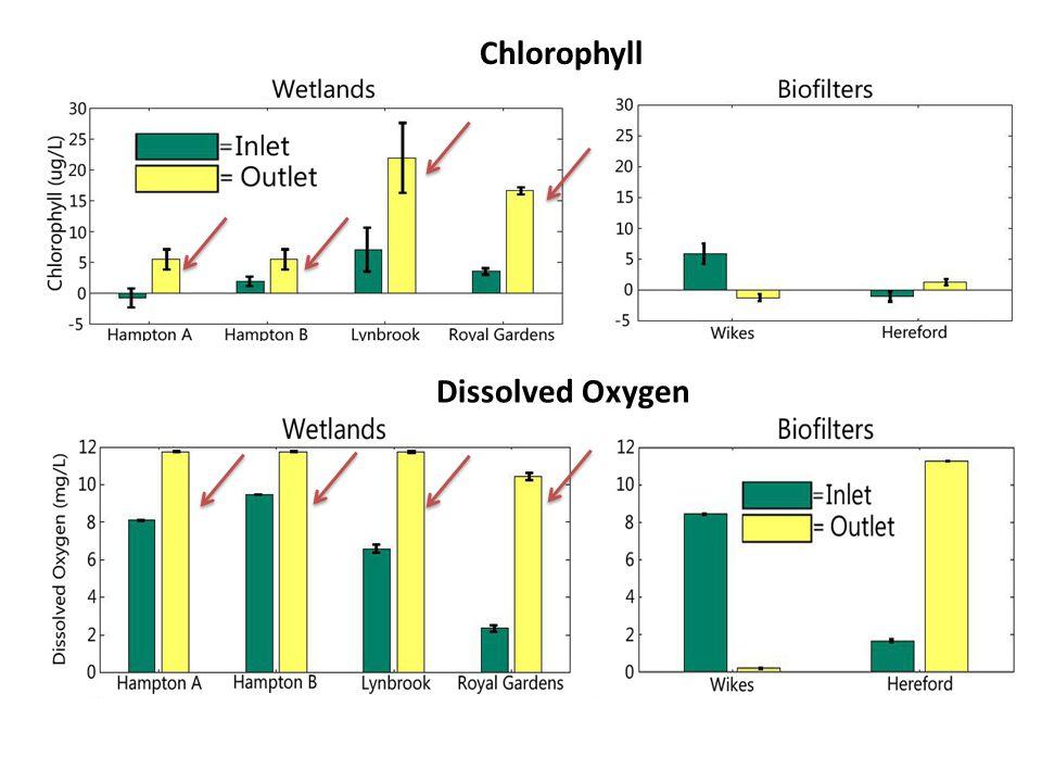 Chlorophyll Dissolved Oxygen