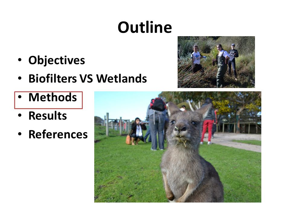 Outline Objectives Biofilters VS Wetlands Methods Results References