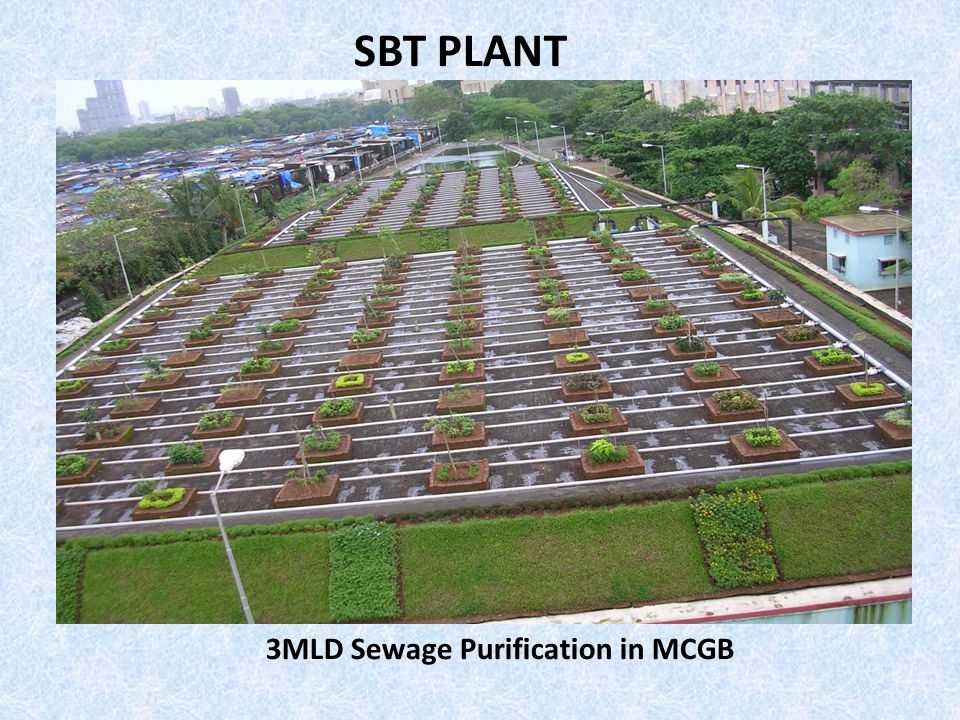 3MLD Sewage Purification in MCGB