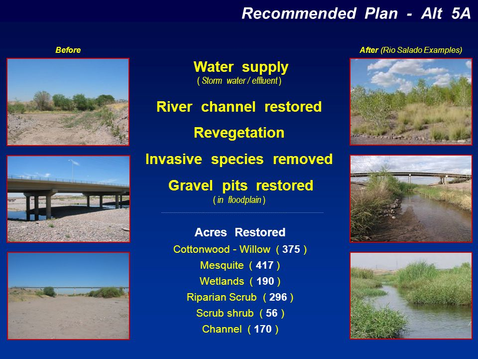 Recommended Plan - Alt 5A Acres Restored Cottonwood - Willow ( 375 ) Mesquite ( 417 ) Wetlands ( 190 ) Riparian Scrub ( 296 ) Scrub shrub ( 56 ) Chann