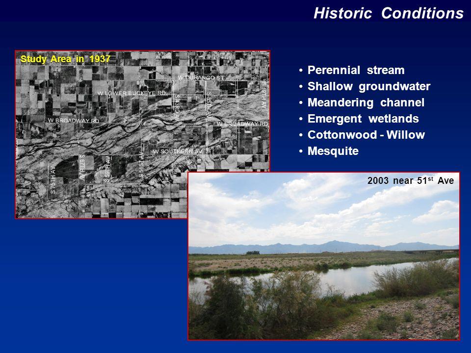 Recommended Plan - Alt 5A Baseline Road Lower Buckeye Road 83 rd Avenue 19 th Avenue 100-year Flood Plain 1 1 2 2 3 3 0 0 Miles Channel Restoration ( 170 acres ) Cottonwood – Willow ( 375 acres ) Mesquite ( 417 acres ) Emergent Wetlands ( 190 acres )