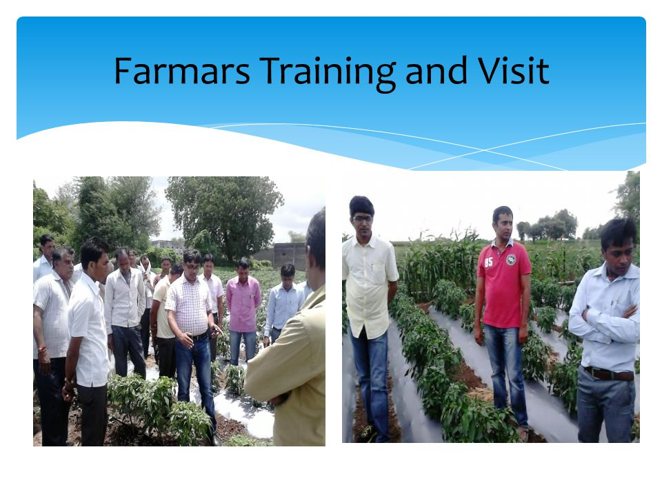Farmars Training and Visit