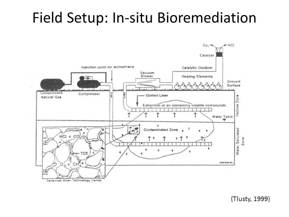 Field Setup: In-situ Bioremediation (Tlusty, 1999)