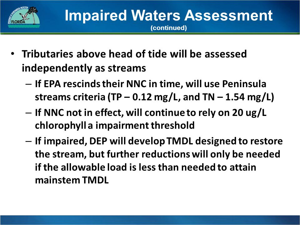 Impaired Waters Assessment (continued) Tributaries above head of tide will be assessed independently as streams – If EPA rescinds their NNC in time, will use Peninsula streams criteria (TP – 0.12 mg/L, and TN – 1.54 mg/L) – If NNC not in effect, will continue to rely on 20 ug/L chlorophyll a impairment threshold – If impaired, DEP will develop TMDL designed to restore the stream, but further reductions will only be needed if the allowable load is less than needed to attain mainstem TMDL