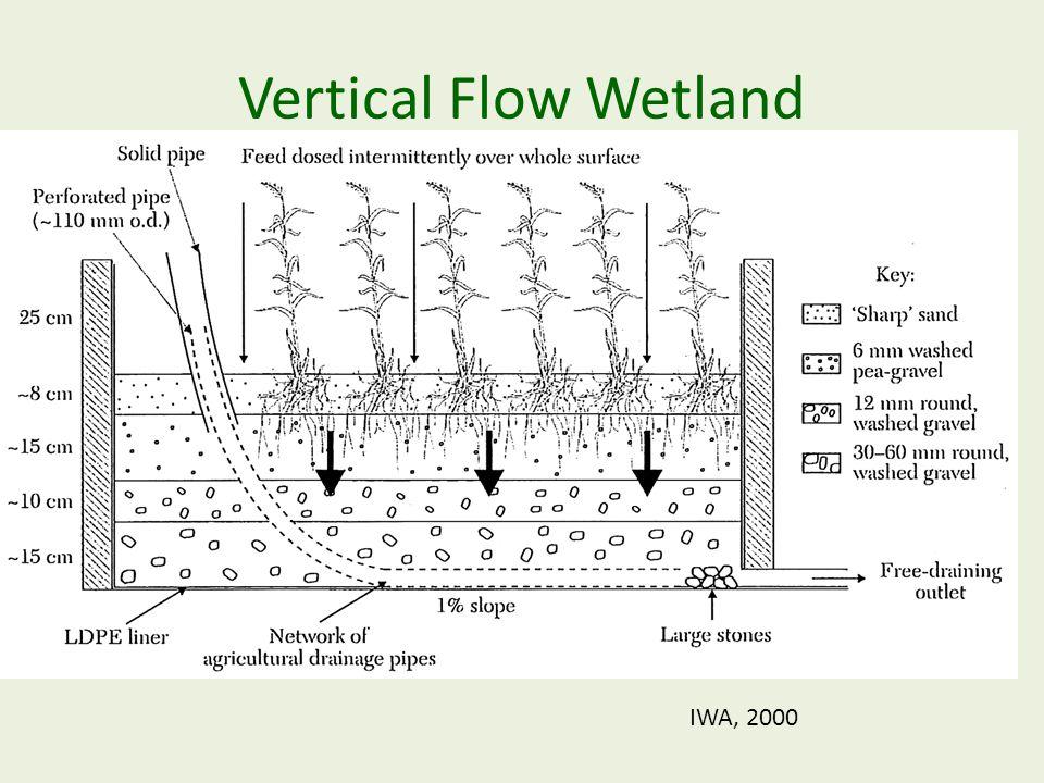 Vertical Flow Wetland IWA, 2000