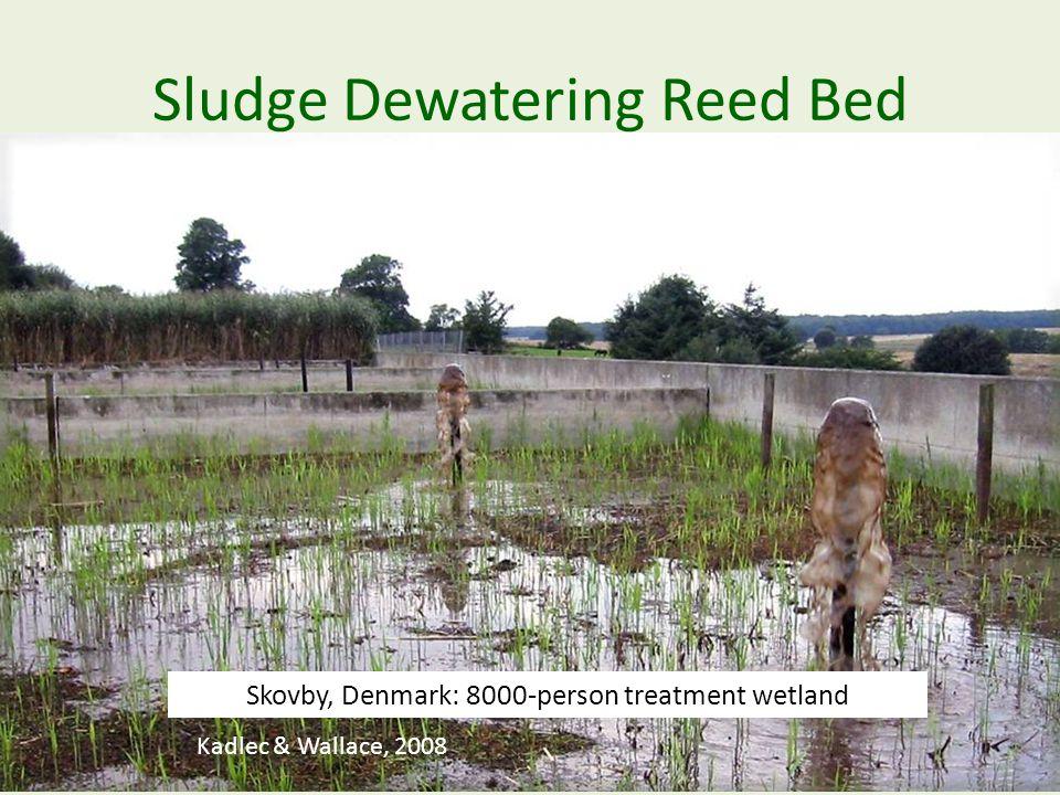 Sludge Dewatering Reed Bed Kadlec & Wallace, 2008 Skovby, Denmark: 8000-person treatment wetland