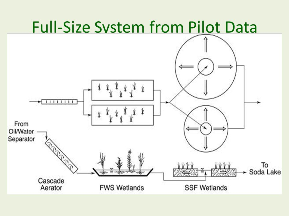 Full-Size System from Pilot Data Wallace & Kadlec, 2005