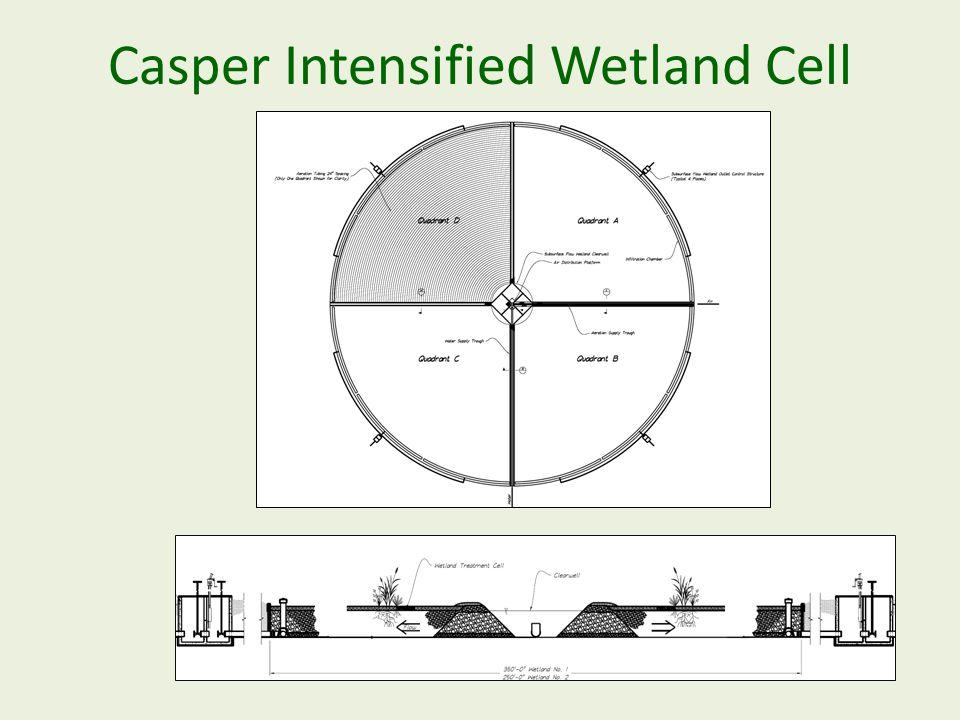 Casper Intensified Wetland Cell