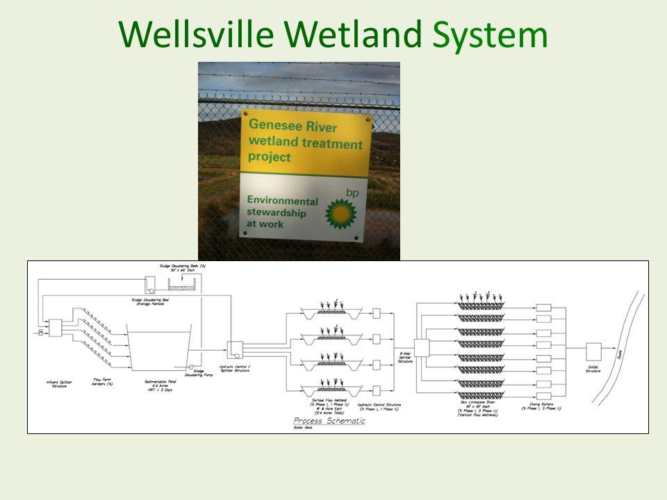 Wellsville Wetland System