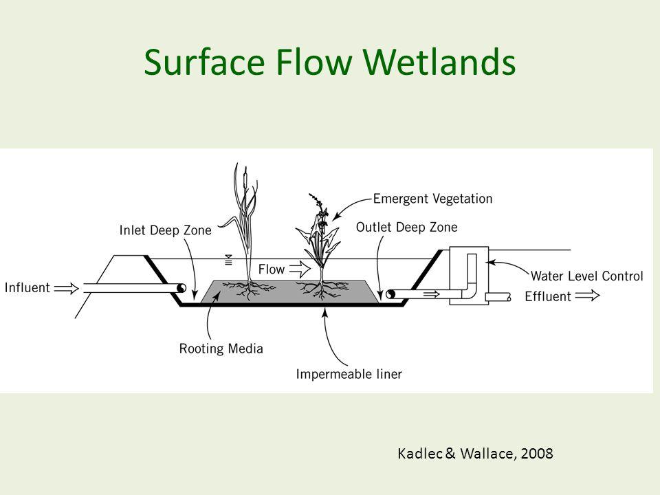 Surface Flow Wetlands Kadlec & Wallace, 2008