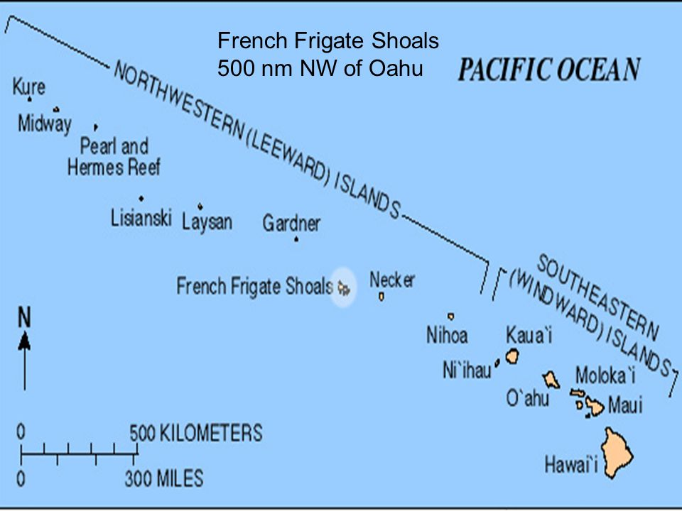 French Frigate Shoals Tern Island