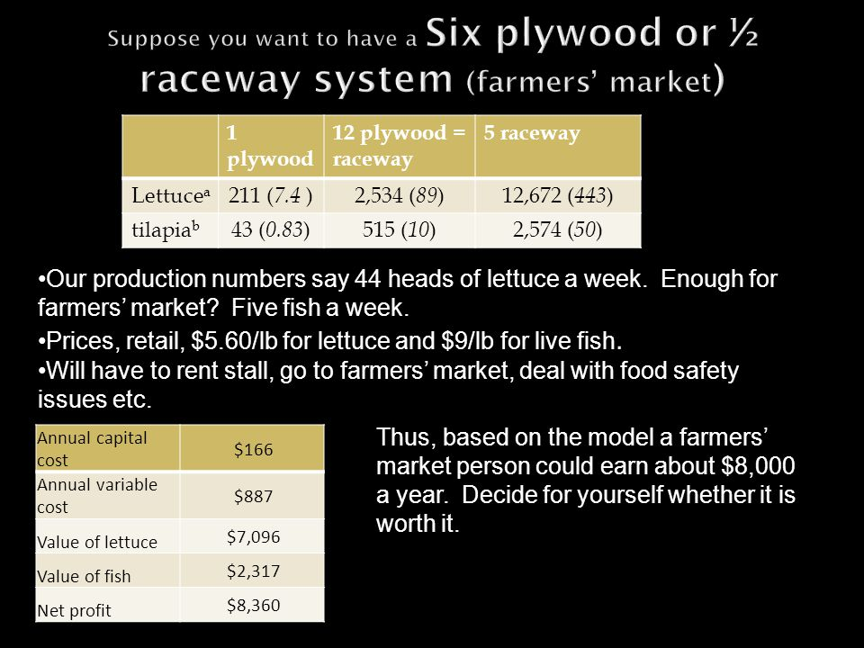 1 plywood 12 plywood = raceway 5 raceway Lettuce a 211 ( 7.4 )2,534 ( 89 )12,672 ( 443 ) tilapia b 43 ( 0.83 )515 ( 10 )2,574 ( 50 ) Our production numbers say 44 heads of lettuce a week.