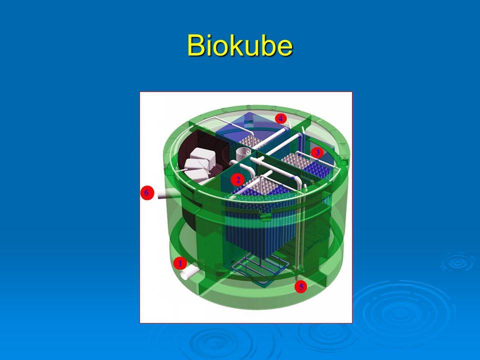 Biokube