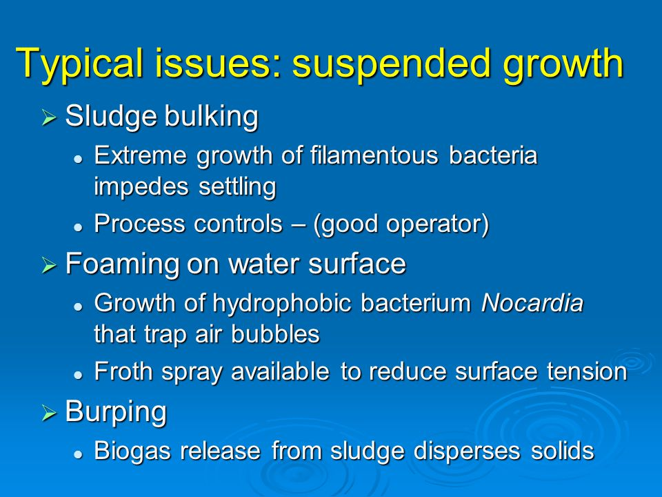 Typical issues: suspended growth  Sludge bulking Extreme growth of filamentous bacteria impedes settling Extreme growth of filamentous bacteria impedes settling Process controls – (good operator) Process controls – (good operator)  Foaming on water surface Growth of hydrophobic bacterium Nocardia that trap air bubbles Growth of hydrophobic bacterium Nocardia that trap air bubbles Froth spray available to reduce surface tension Froth spray available to reduce surface tension  Burping Biogas release from sludge disperses solids Biogas release from sludge disperses solids
