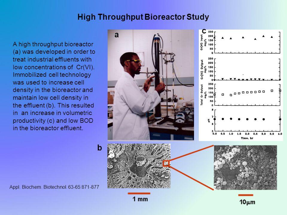 High Throughput Bioreactor Study Appl. Biochem. Biotechnol.