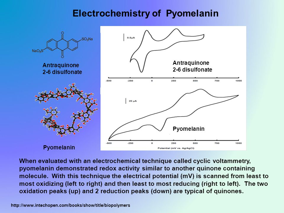 Antraquinone 2-6 disulfonate Pyomelanin Electrochemistry of Pyomelanin http://www.intechopen.com/books/show/title/biopolymers Antraquinone 2-6 disulfonate Pyomelanin When evaluated with an electrochemical technique called cyclic voltammetry, pyomelanin demonstrated redox activity similar to another quinone containing molecule.