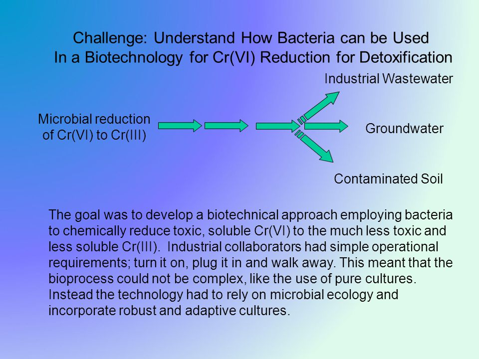 Groundwater Industrial Wastewater Contaminated Soil Challenge: Understand How Bacteria can be Used In a Biotechnology for Cr(VI) Reduction for Detoxification Microbial reduction of Cr(VI) to Cr(III) The goal was to develop a biotechnical approach employing bacteria to chemically reduce toxic, soluble Cr(VI) to the much less toxic and less soluble Cr(III).
