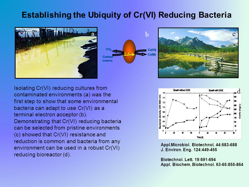 Establishing the Ubiquity of Cr(VI) Reducing Bacteria Appl.Microbiol.