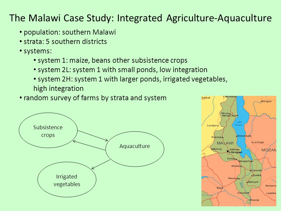 The Malawi Case Study: Integrated Agriculture-Aquaculture population: southern Malawi strata: 5 southern districts systems: system 1: maize, beans other subsistence crops system 2L: system 1 with small ponds, low integration system 2H: system 1 with larger ponds, irrigated vegetables, high integration random survey of farms by strata and system Subsistence crops Aquaculture Irrigated vegetables