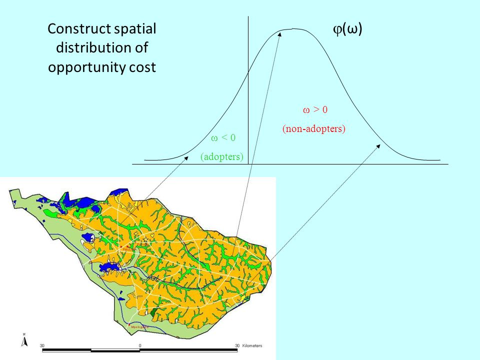 Construct spatial distribution of opportunity cost ω < 0 (adopters) ω > 0 (non-adopters) (ω)(ω)