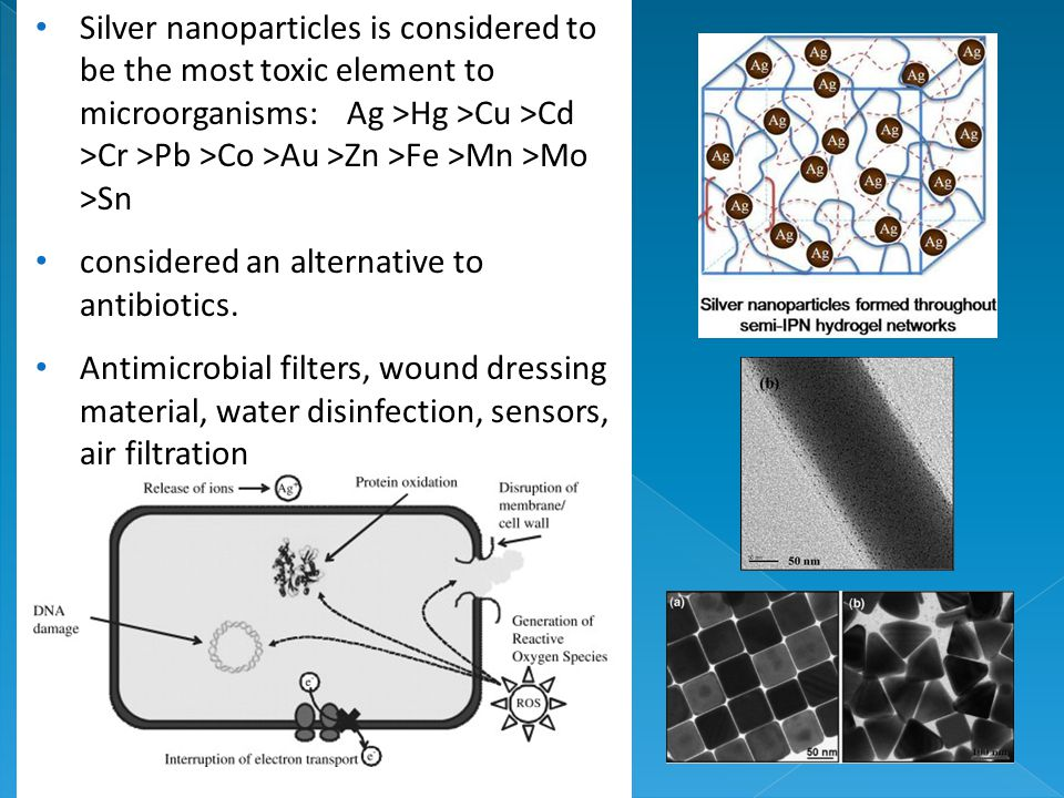 Silver nanoparticles is considered to be the most toxic element to microorganisms: Ag >Hg >Cu >Cd >Cr >Pb >Co >Au >Zn >Fe >Mn >Mo >Sn considered an alternative to antibiotics.