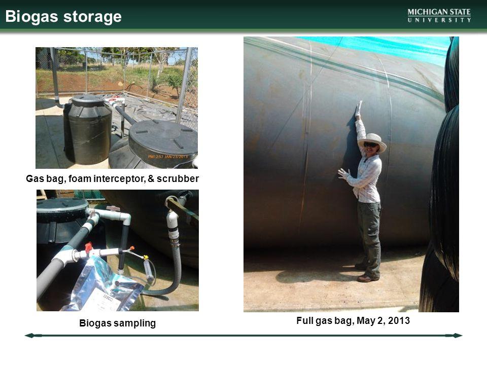 Biogas storage Biogas sampling Gas bag, foam interceptor, & scrubber Full gas bag, May 2, 2013