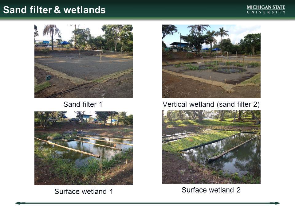 Sand filter 1Vertical wetland (sand filter 2) Surface wetland 1 Surface wetland 2 Sand filter & wetlands