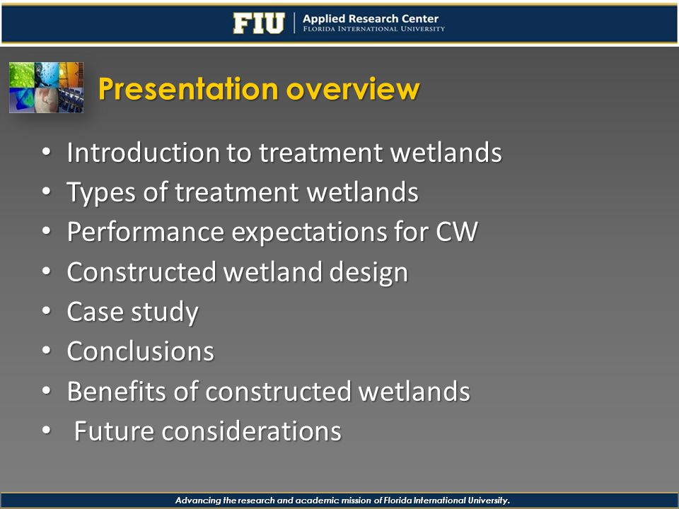Advancing the research and academic mission of Florida International University.