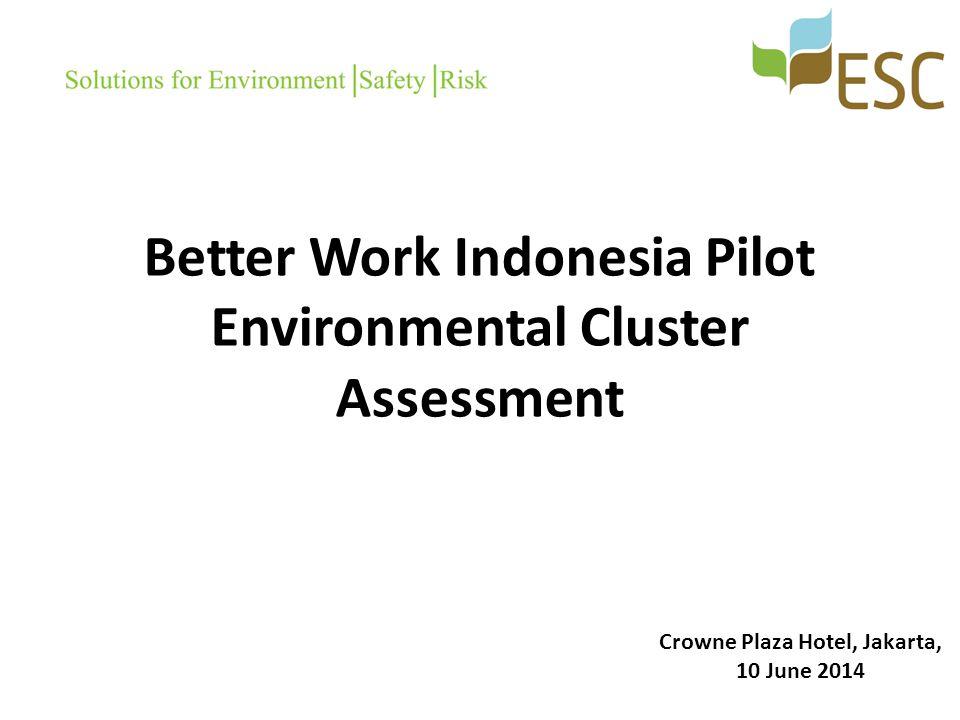 Better Work Indonesia Pilot Environmental Cluster Assessment Crowne Plaza Hotel, Jakarta, 10 June 2014