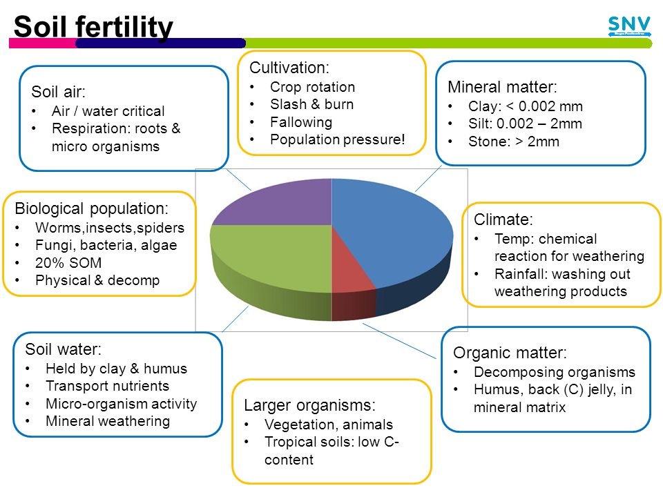 Factors affecting nutrient content Species, age, and condition of the animal from which the dung is drawn Nutrition - composition of diets Environmental factors The way the slurry is stored, treated and applied to the field