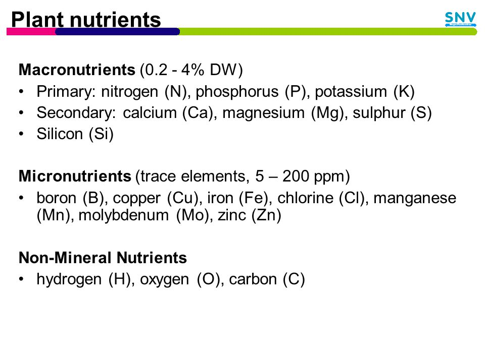 Plant nutrients Macronutrients (0.2 - 4% DW) Primary: nitrogen (N), phosphorus (P), potassium (K) Secondary: calcium (Ca), magnesium (Mg), sulphur (S) Silicon (Si) Micronutrients (trace elements, 5 – 200 ppm) boron (B), copper (Cu), iron (Fe), chlorine (Cl), manganese (Mn), molybdenum (Mo), zinc (Zn) Non-Mineral Nutrients hydrogen (H), oxygen (O), carbon (C)