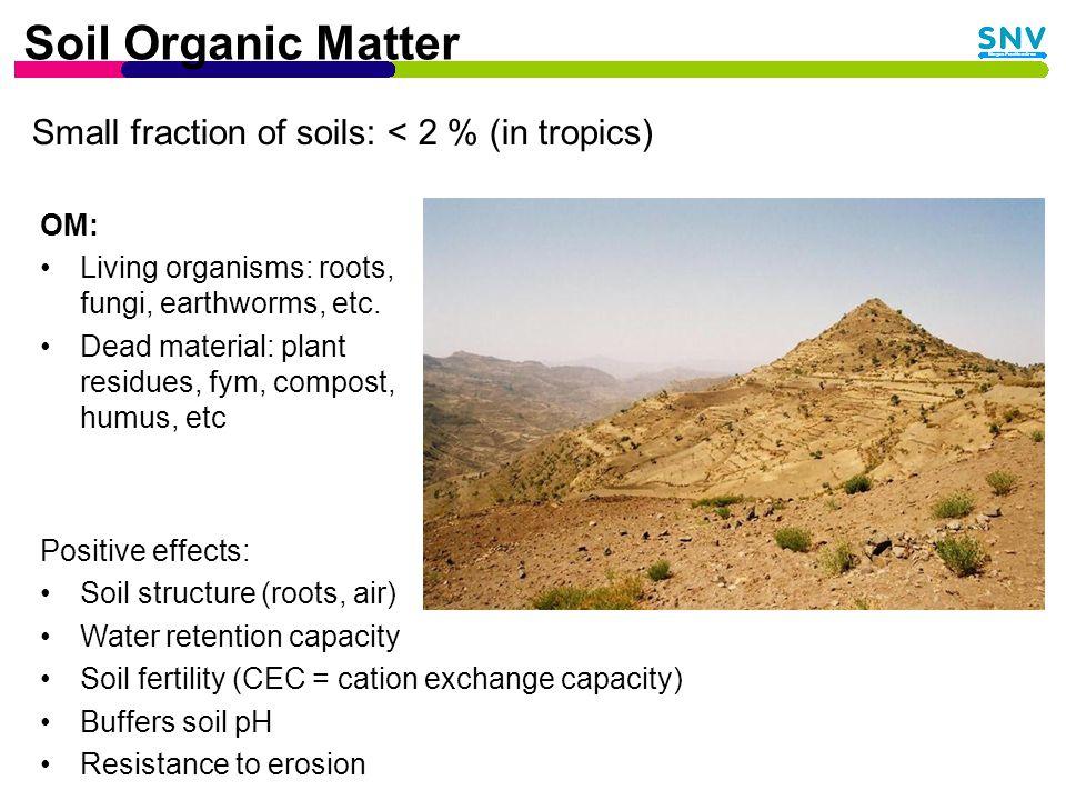 Fertilizers Organic fertilizer: –Broad range of nutrients –Low in N-P-K –Long term effect (indirect) –High soil organic matter content Chemical fertilizers: –Short term effect (direct) –High in N, P or K Integrated Soil Fertility Management: –Optimal combination of organic and chemical fertilizers