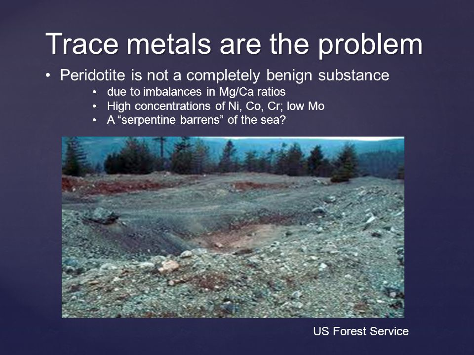 Trace metals are the problem Peridotite is not a completely benign substance due to imbalances in Mg/Ca ratios High concentrations of Ni, Co, Cr; low Mo A serpentine barrens of the sea.